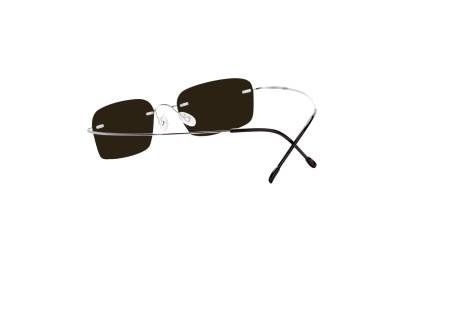 Billiga kompletta glasögon modell Mackay Silver i glas med färgen Brun 85%  för 499 - 7333c75d4639e