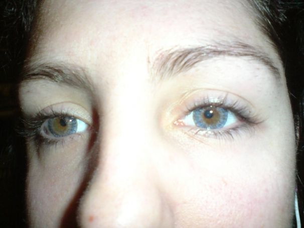 elisabeth Freshlook One Day Color  large
