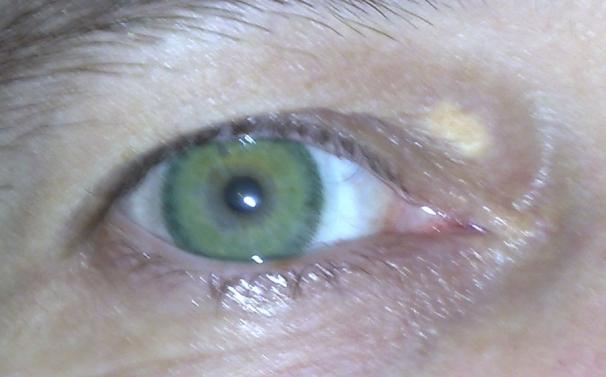 Yvonne  Freshlook Dimensions  Sea Green large 1