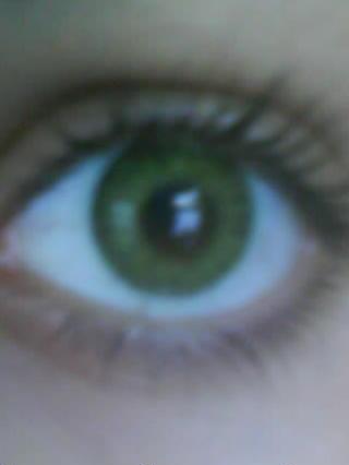 Freshlook Colorblends Gemstone Green large